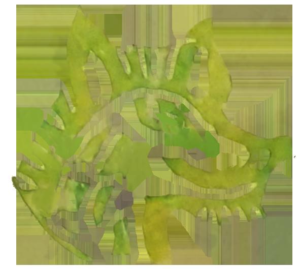6.1 wolf effecten PNG